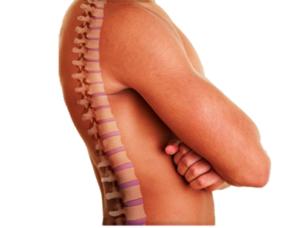 Utjecati na veliki broj različitih zglobova
